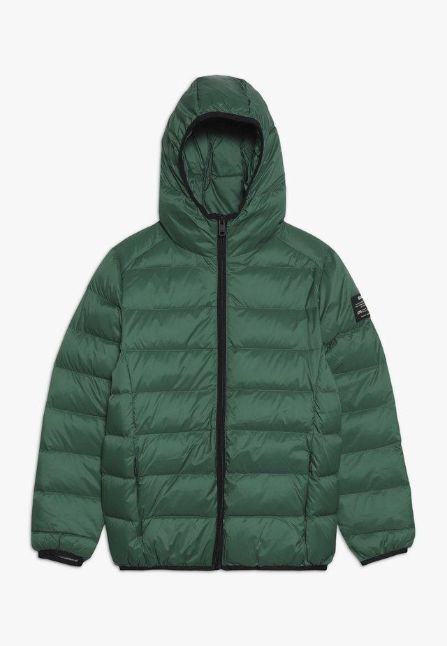 ASPEN - Winterjas - green