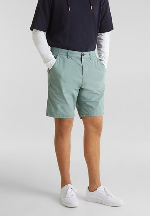 Shorts - light aqua green