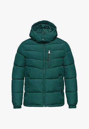 WINTER  - Winter jacket - dark green