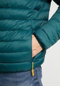 edc by Esprit - Zimní bunda - dark green - 5
