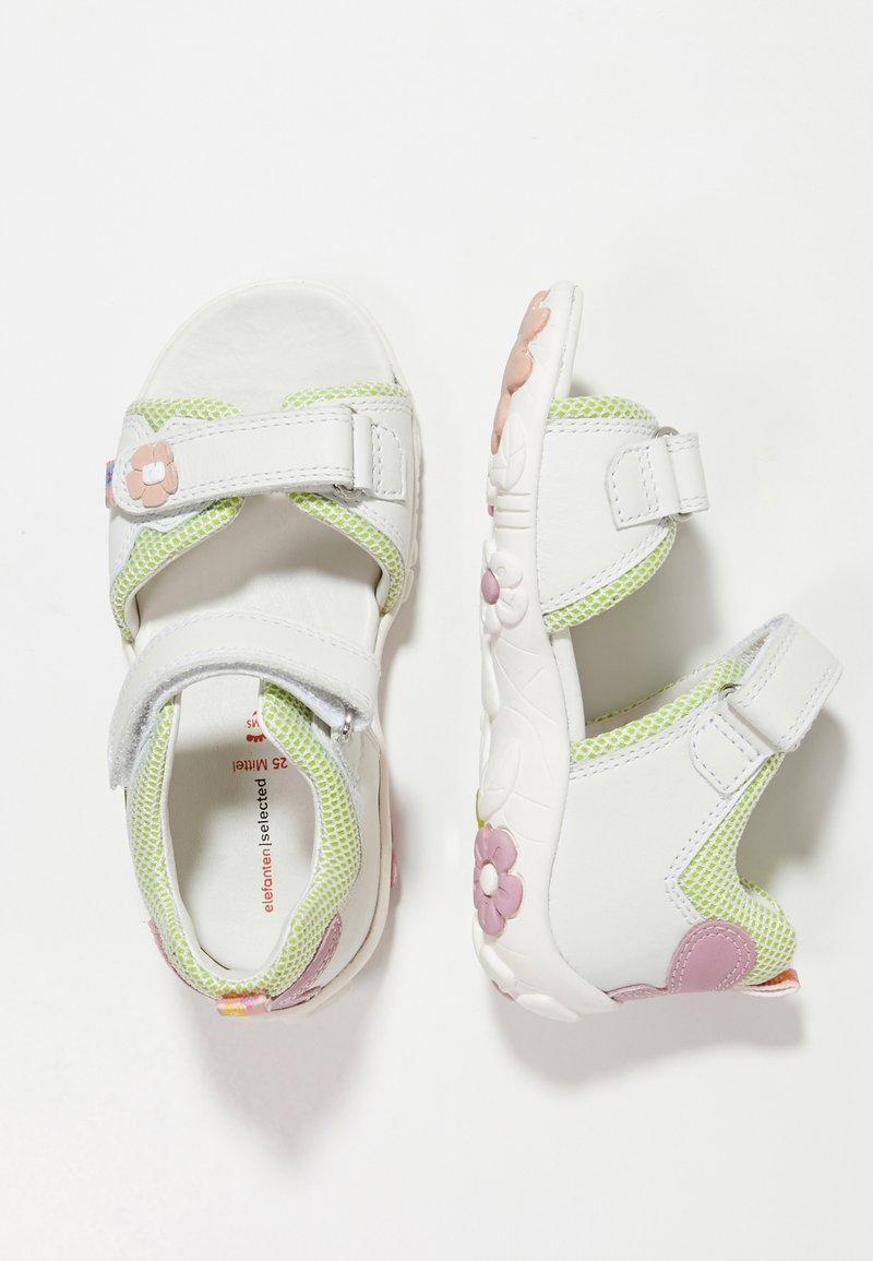 Elefanten - POLLY - Zapatos de bebé - white