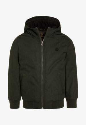 DULCEY BOY - Winter jacket - olive drab