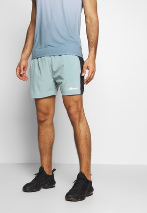ELVAS - Sports shorts - grey