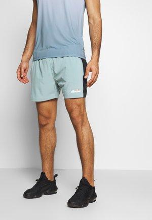 ELVAS - Pantalón corto de deporte - grey