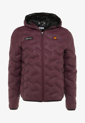 STANNETTI - Winter jacket - burgundy