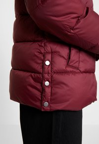 Esprit - THINSULATE - Winter jacket - bordeaux red - 4