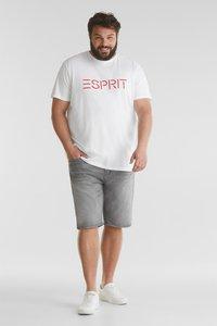 Esprit - BIG - Denim shorts - grey light washed - 1