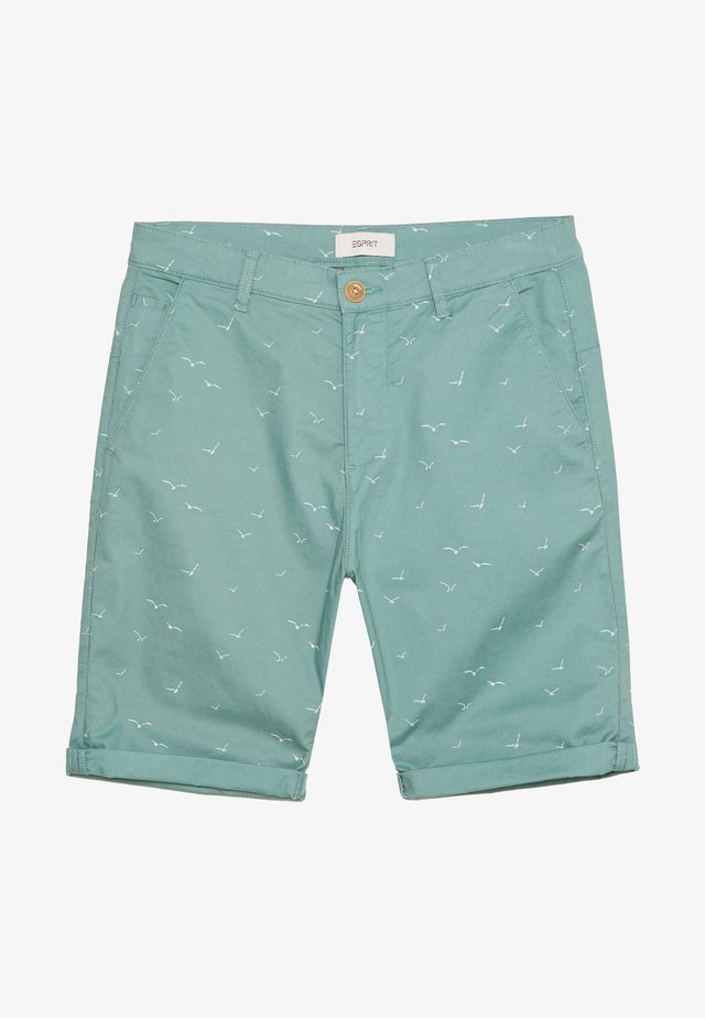Shorts - teal green