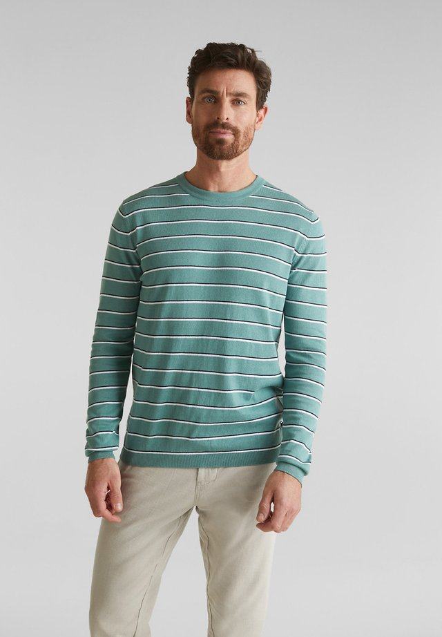 STRIPED C-NECK SWEATER - Trui - teal green