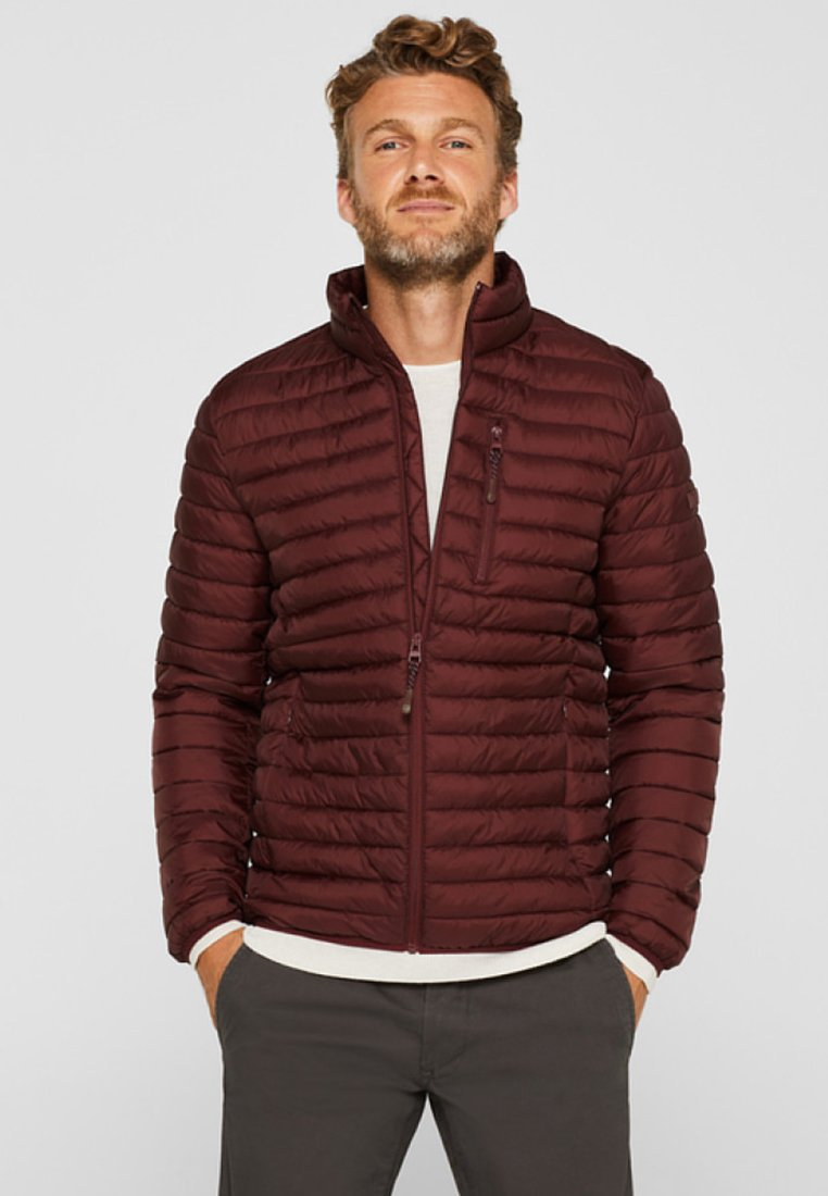 Esprit - THINSULATE - Light jacket - dark red