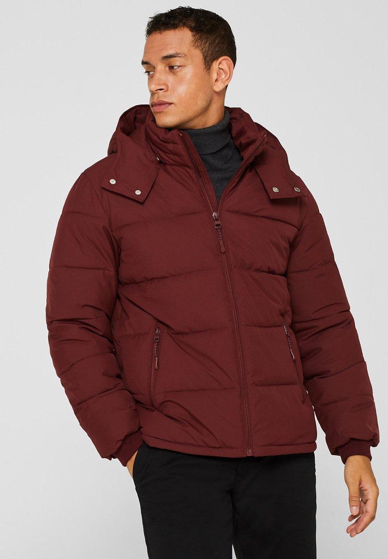 Esprit - Winter jacket - dark red