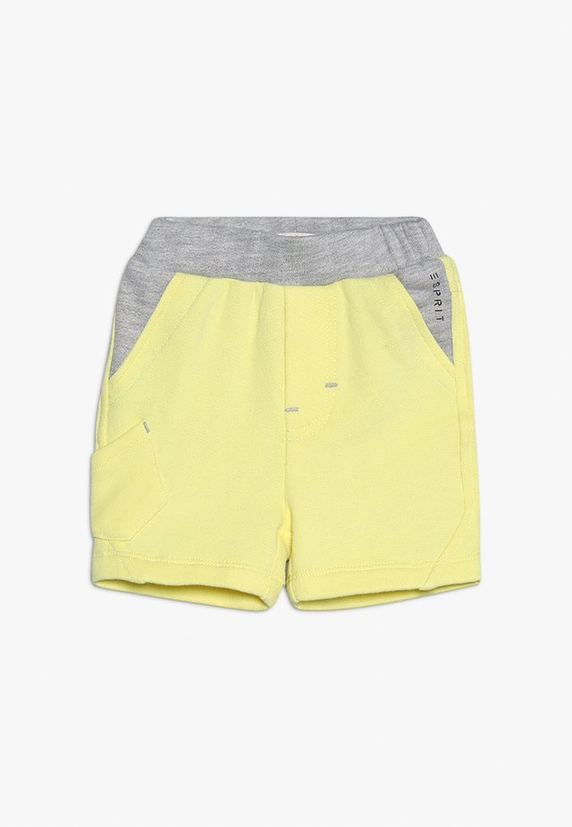 BABY - Shorts - lemon drop