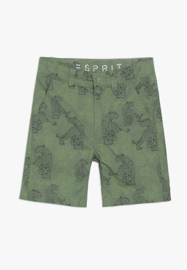 BERMUDA - Shorts - pastel green