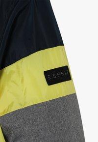 Esprit - Winterjas - grey melange/dark blue - 5