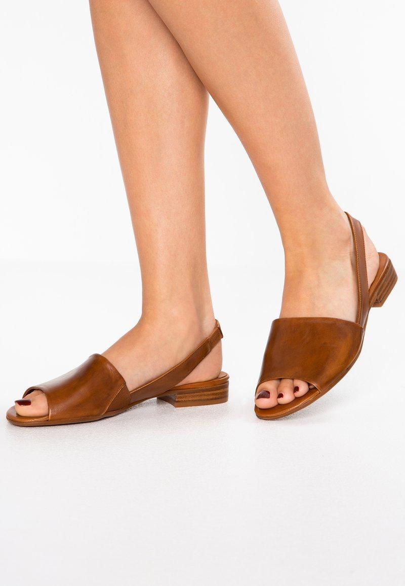 Everybody - Sandals - terra