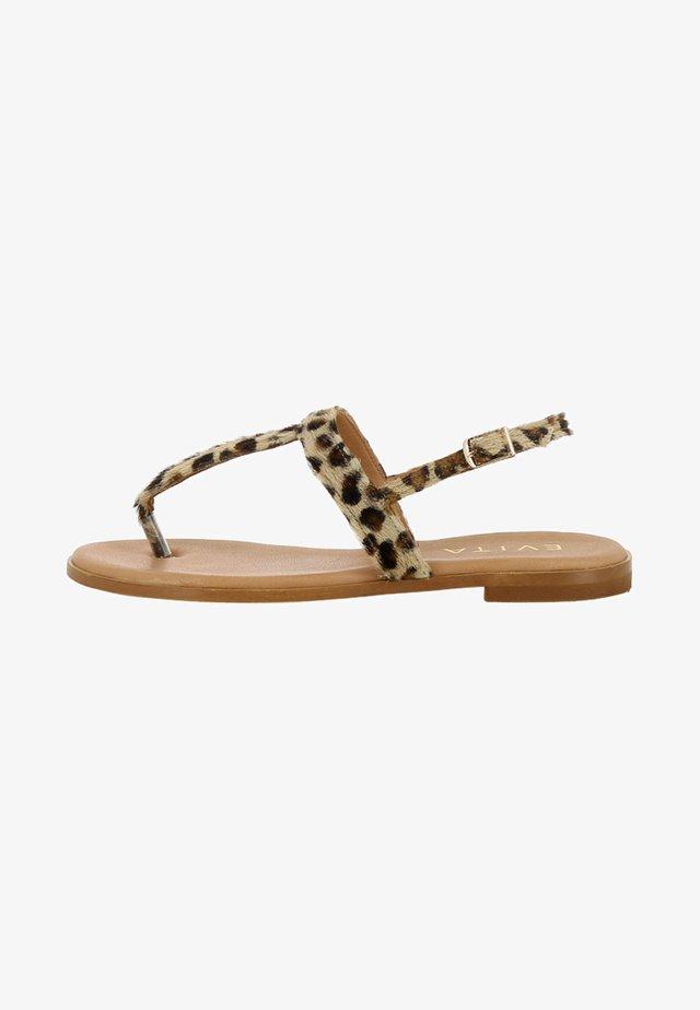OLIMPIA - Sandaler - brown
