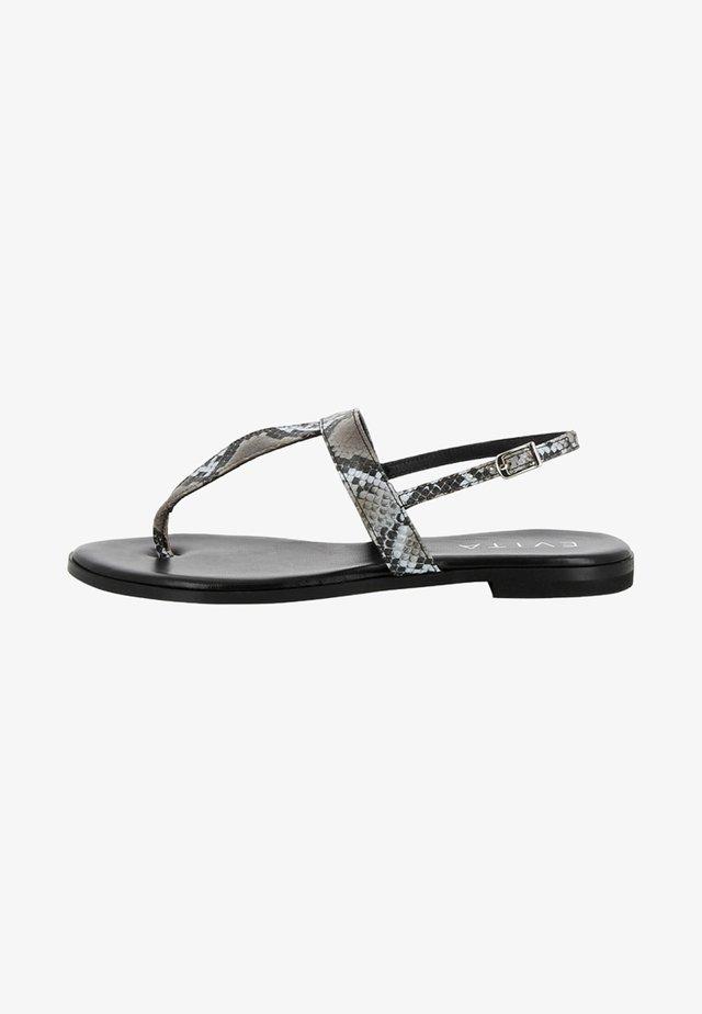 OLIMPIA - Sandaler - grey