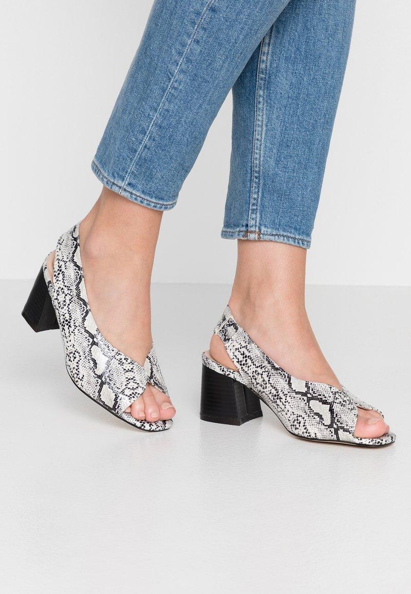 Evans - WIDE FIT HALLEY SHOE - Sandals - grey