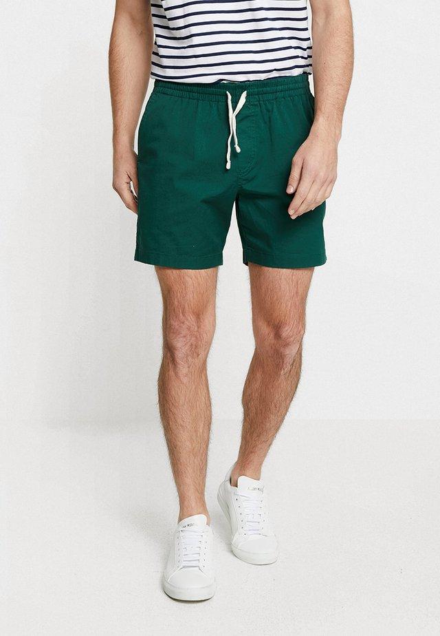 VAL STRETCH DRAWSTRING - Shorts - lawn green