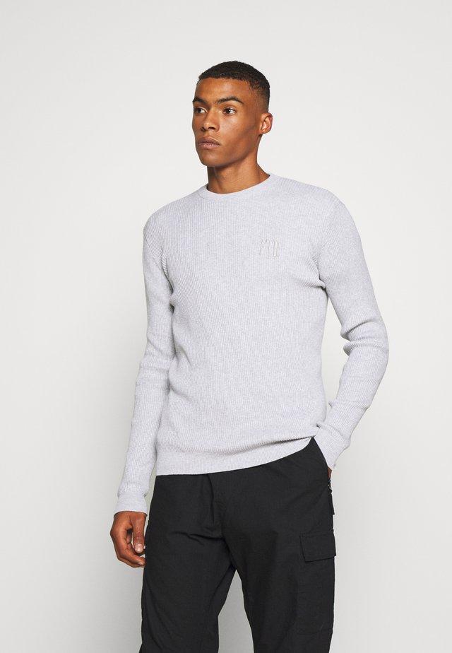 PARKER  - Stickad tröja - grey