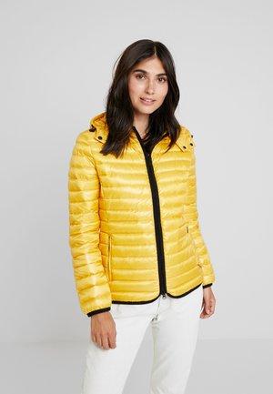 JACKET - Down jacket - golden yellow