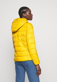 Springfield - ACOLCHADA LIGHT WEIGHT - Winter jacket - yellows - 2