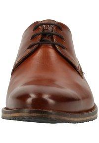 Fretz Men - Business sko - brown - 5