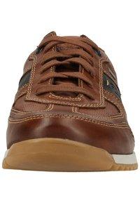Fretz Men - Sneakers - brown - 5