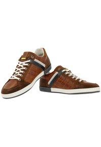 Gaastra - WILLIS PUL - Sneakers laag - cognac - 3