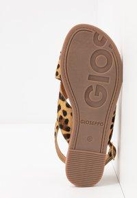 Gioseppo - Sandals - brown - 6