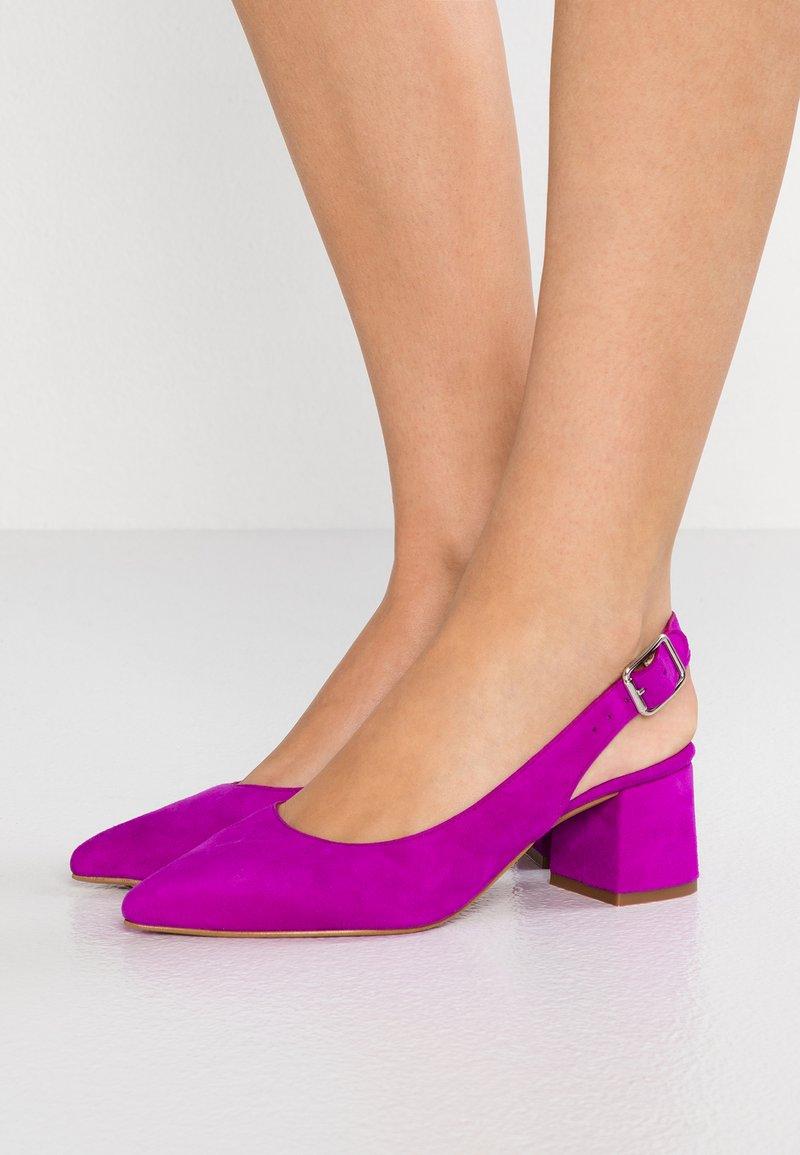 Gardenia - CUPITER  - Classic heels - fuschia