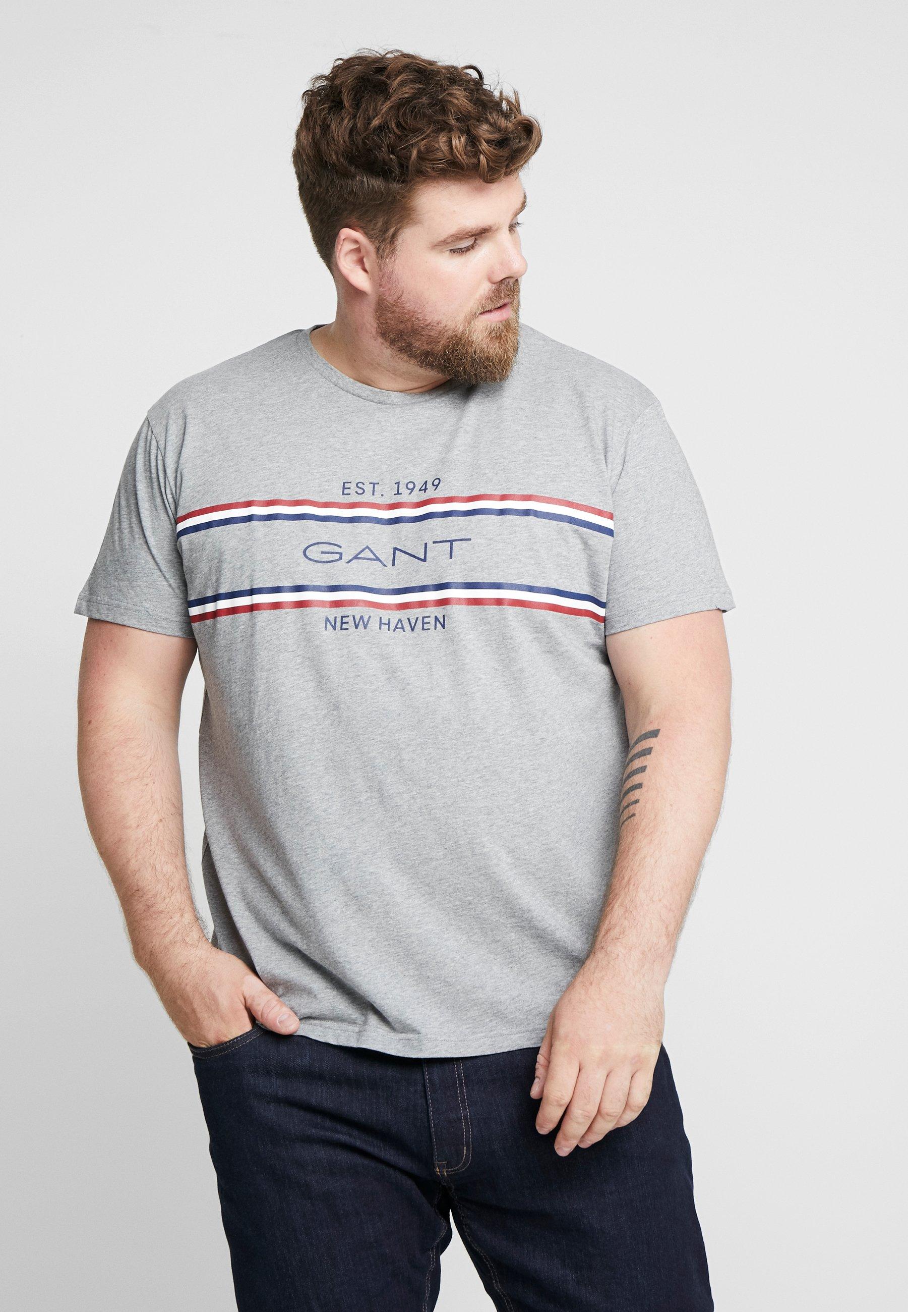 GANT STRIPE - T-shirt z nadrukiem - grey melange