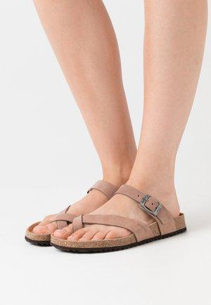 BRIONIA - Sandalias de dedo - taupe