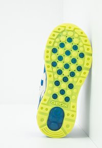 Geox - BOY - Baskets basses - royal/lime - 4