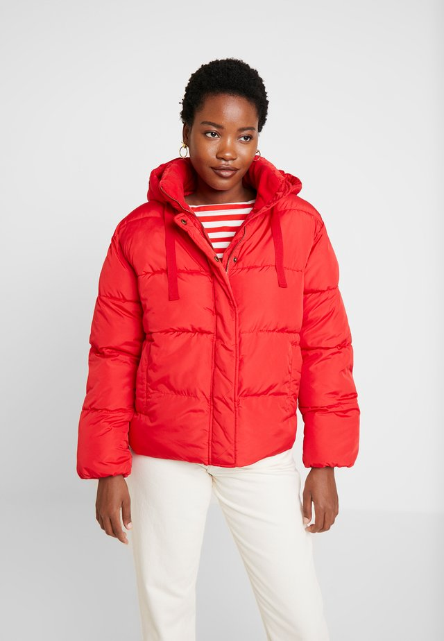 V-MIDWEIGHT NOVELTY PUFFER - Winter jacket - pure red