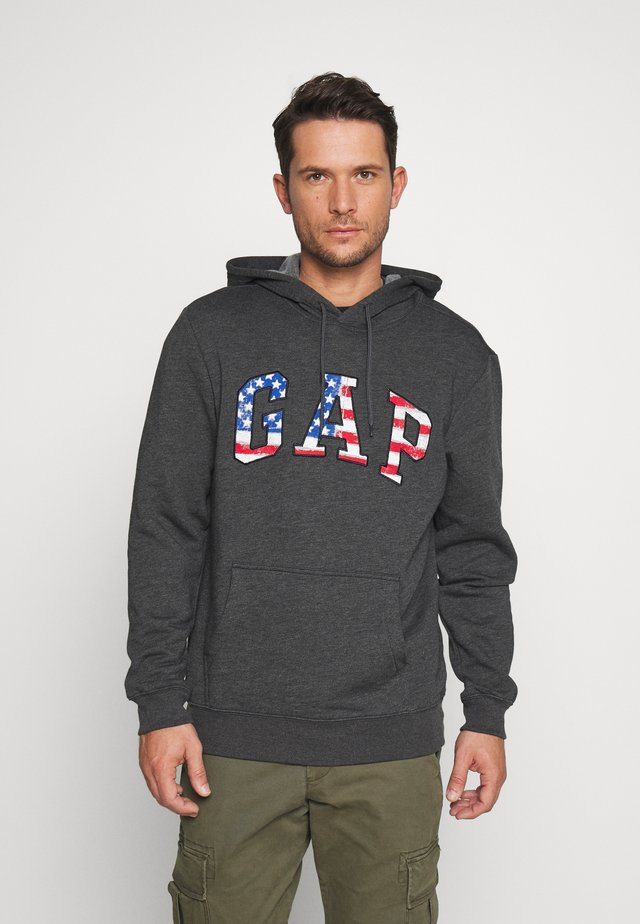 ARCH FLAG - Jersey con capucha - charcoal heather