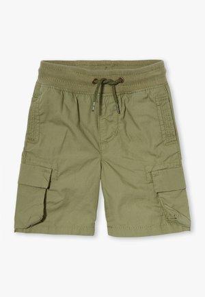 TODDLER BOY - Shorts - new thyme
