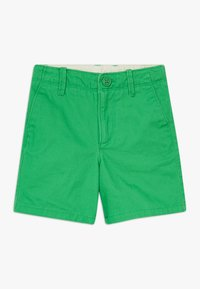 GAP - TODDLER BOY - Kraťasy - lush green - 0