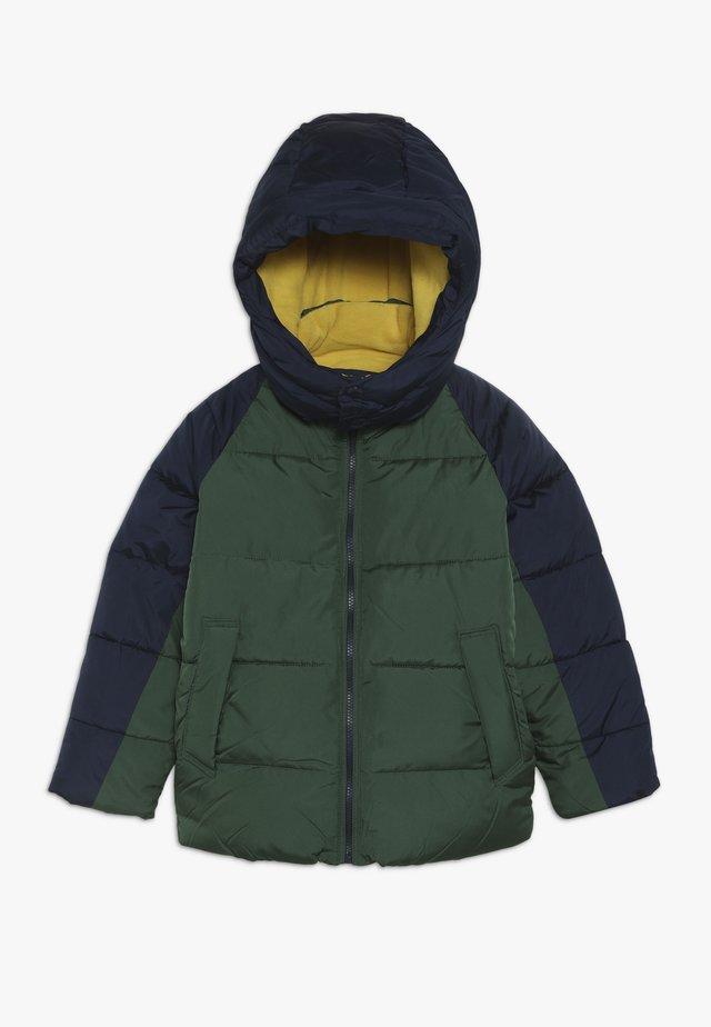 BOY WARMEST - Winterjacke - green gables