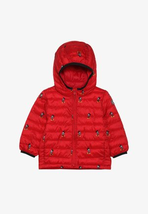 TODDLER BOY PUFFER - Zimní bunda - pure red