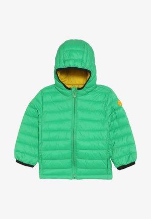TODDLER BOY PUFFER - Zimní bunda - lush green
