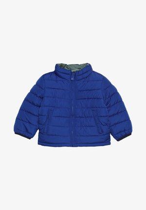 TODDLER BOY PUFFER - Winter jacket - brilliant blue