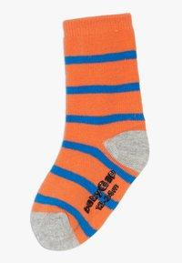 GAP - TODDLER BOY  7 PACK - Ponožky - multi - 1