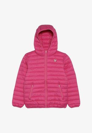 JUNIOR UNISEX PADDED PUFFER - Zimní bunda - pink
