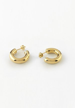LIQUID - Earrings - gold