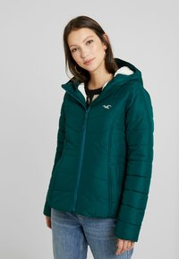Hollister Co. - CORE PUFFER JACKET - Zimní bunda - sea moss - 0