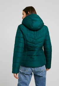 Hollister Co. - CORE PUFFER JACKET - Zimní bunda - sea moss - 2
