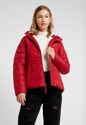 CORE PUFFER JACKET - Chaqueta de invierno - red