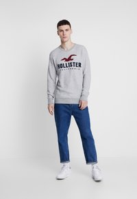 Hollister Co. - TECH LOGO CREW - Sudadera - grey - 1
