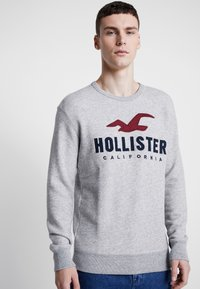 Hollister Co. - TECH LOGO CREW - Sudadera - grey - 3